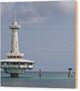 Nassau - Coral World Redux Wood Print