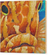 Nassau Grouper  Wood Print