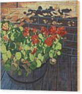 Nasturtiums In Late Light Wood Print