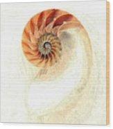 Natilus Wood Print