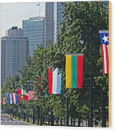 National Flags Of Various Countries Wood Print