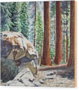 National Park Sequoia Wood Print