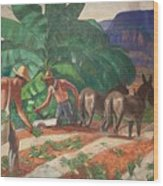 National Park Service - Tropical Country Wood Print
