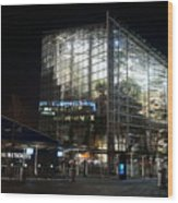 National Seaquarium In Lights Wood Print