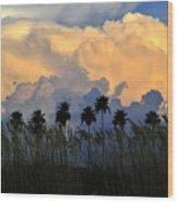 Native Florida Wood Print
