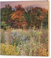 Native Garden Sunset Wood Print