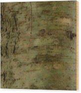 Native Tree Wood Print