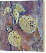 Native Yellow  Wood Print