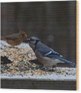 Natures Birds 51 Wood Print