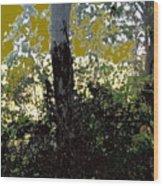 Natura 2 Wood Print by Therese AbouNader