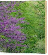 Natural Background Wood Print