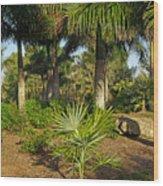 Natural Beauty Of Florida Wood Print