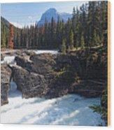 Natural Bridge On The Kicking Horse River Wood Print