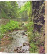 Natural Bridge Valley Wood Print