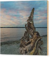 Natural Driftwood At Birch Bay State Park Wood Print