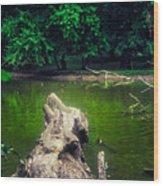 Natural Fishing Pier Wood Print