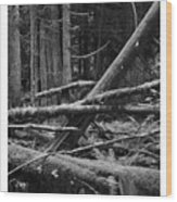 Natural Forest Wood Print