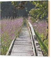 Natural Healing Wood Print
