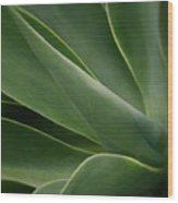 Natural Impressions Wood Print