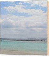 Natural Landscape With The Ocean From An Island In Maldives Wood Print