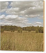 Natural Meadow Landscape Panorama. Wood Print