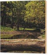 Natural Seating By River Wood Print