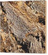 Natural Textural Abstract Wood Print