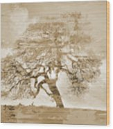 Natural Tree Wood Print