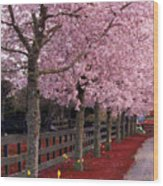 Nature - Pink Trees Wood Print