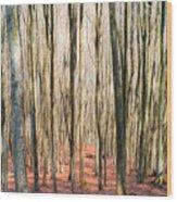 Nature 11 Wood Print