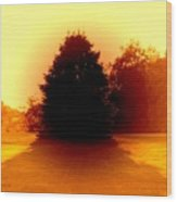 Nature 2 Wood Print