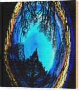 Nature Egg Wood Print