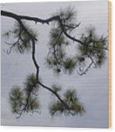 Nature Frame Wood Print