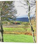 Nature Has Reclaimed The Lake Wood Print