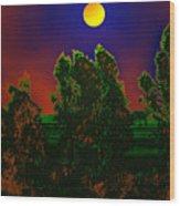 Nature In Full Moon  Wood Print