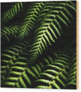 Nature In Minimalism Wood Print