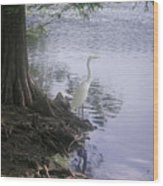 Nature In The Wild - Musings By A Lake Wood Print