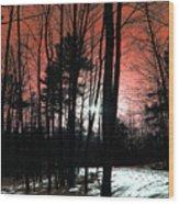 Nature Of Wood Wood Print