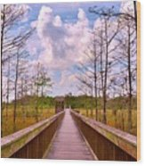 Nature Path Wood Print