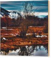 Nature Reflects Wood Print