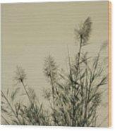 Nature Scenery In Lijiang China Wood Print