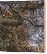 Nature Tangle Wood Print
