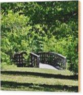 Nature Trail Wood Print