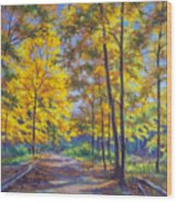 Nature Trail Turn Of Autumn Wood Print by Fiona Craig
