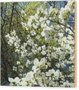 Nature Tree Landscape Art Prints White Dogwood Flowers Wood Print