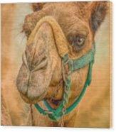 Nature Wear Camel Wood Print