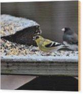 Natures Birds 58 Wood Print