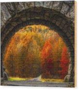 Natures Color Schemes Wood Print