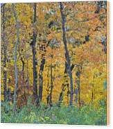 Nature's Colors Wood Print