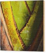 Interwoven  Wood Print